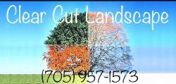 Clear Cut Landscape (Landscaping,Maintenance,Construction)