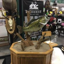 Woods and Water Taxidermy and Guide Services